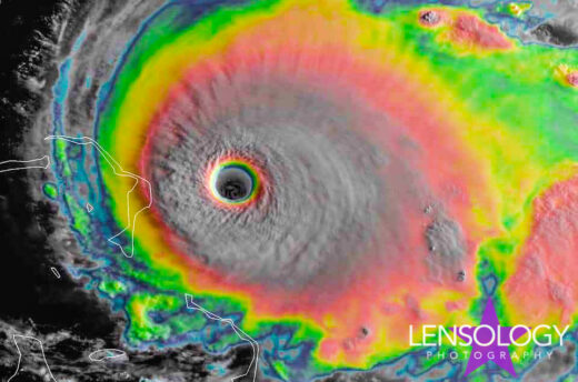 lensology.net